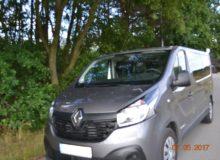 Renault natle drzew